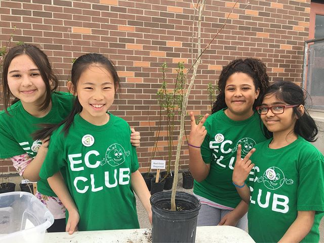 Dallington Public School's Eco Club are doing an amazing job showing #donvalleynorth how to plant and care for their new #treeforme trees! We're here until 3, come say hello!