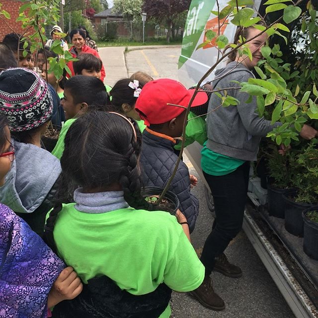 We've got some SERIOUS tree experts over here at Glen Ravine! We love seeing kids get excited about trees! We'll be here giving away free trees for the afternoon today 🌱🌳 #TreeForMe #everytreecounts #letsgetplanting #urbantrees