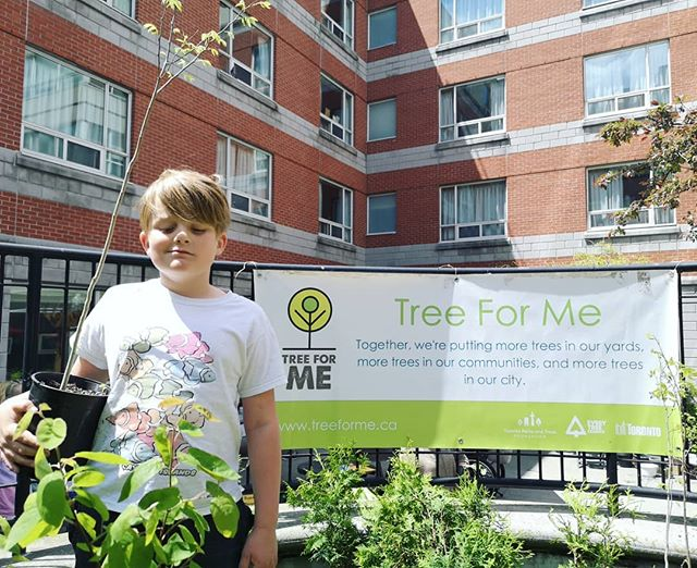 Thanks for coming by @finnizcool to the Harbord Village Residents Association's #treeforme event!