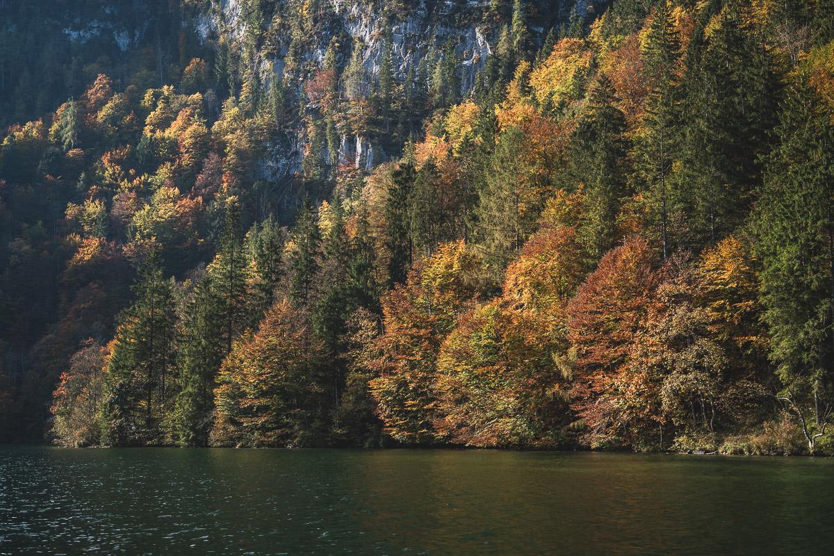 Fall colors around Lake Königssee