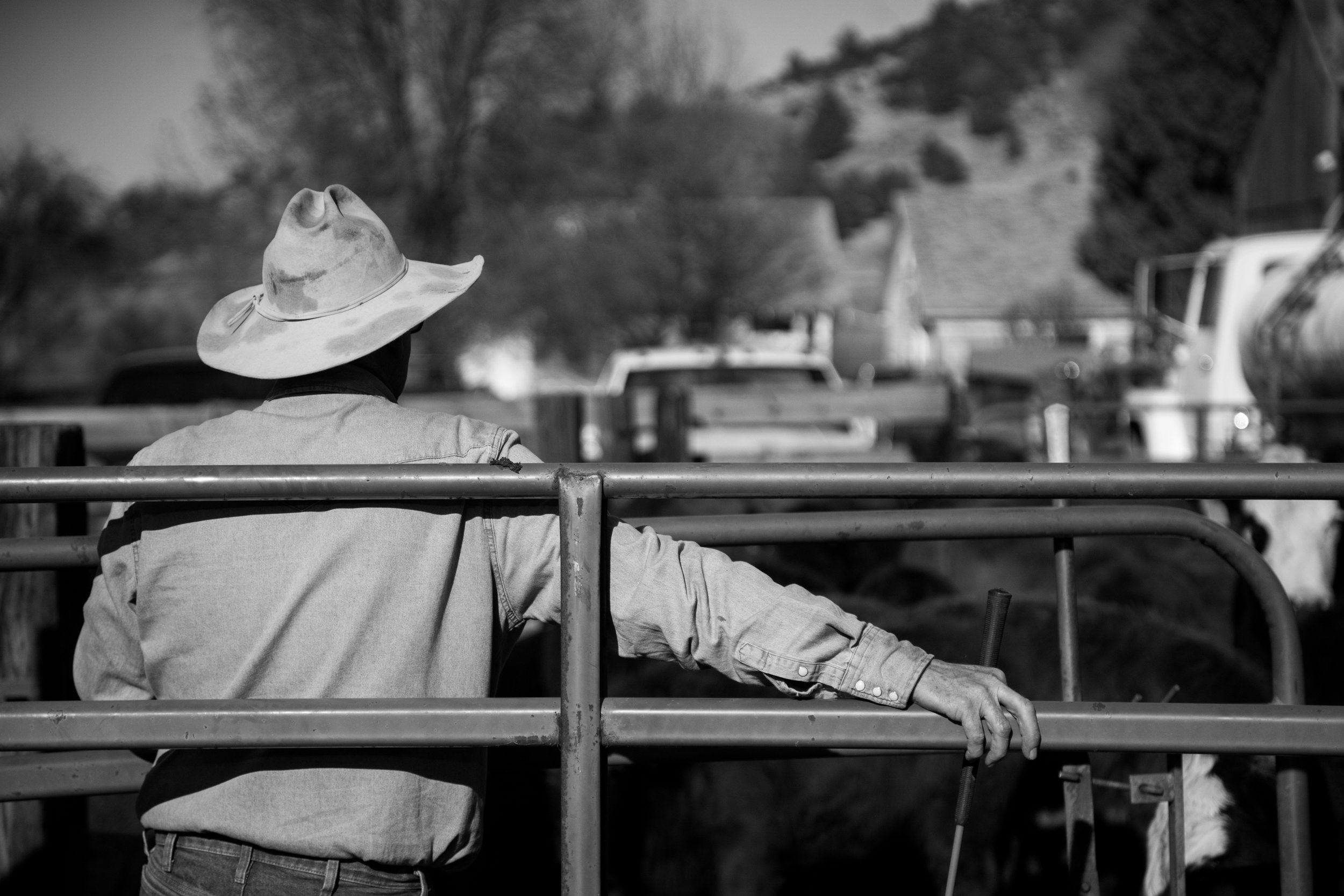 Influenced by my family's ranch, - the beauty and heartbreak in farming, and an all encompassing love of eating, I am constantly driven to connect over food. That connection is the heart of these tables.
