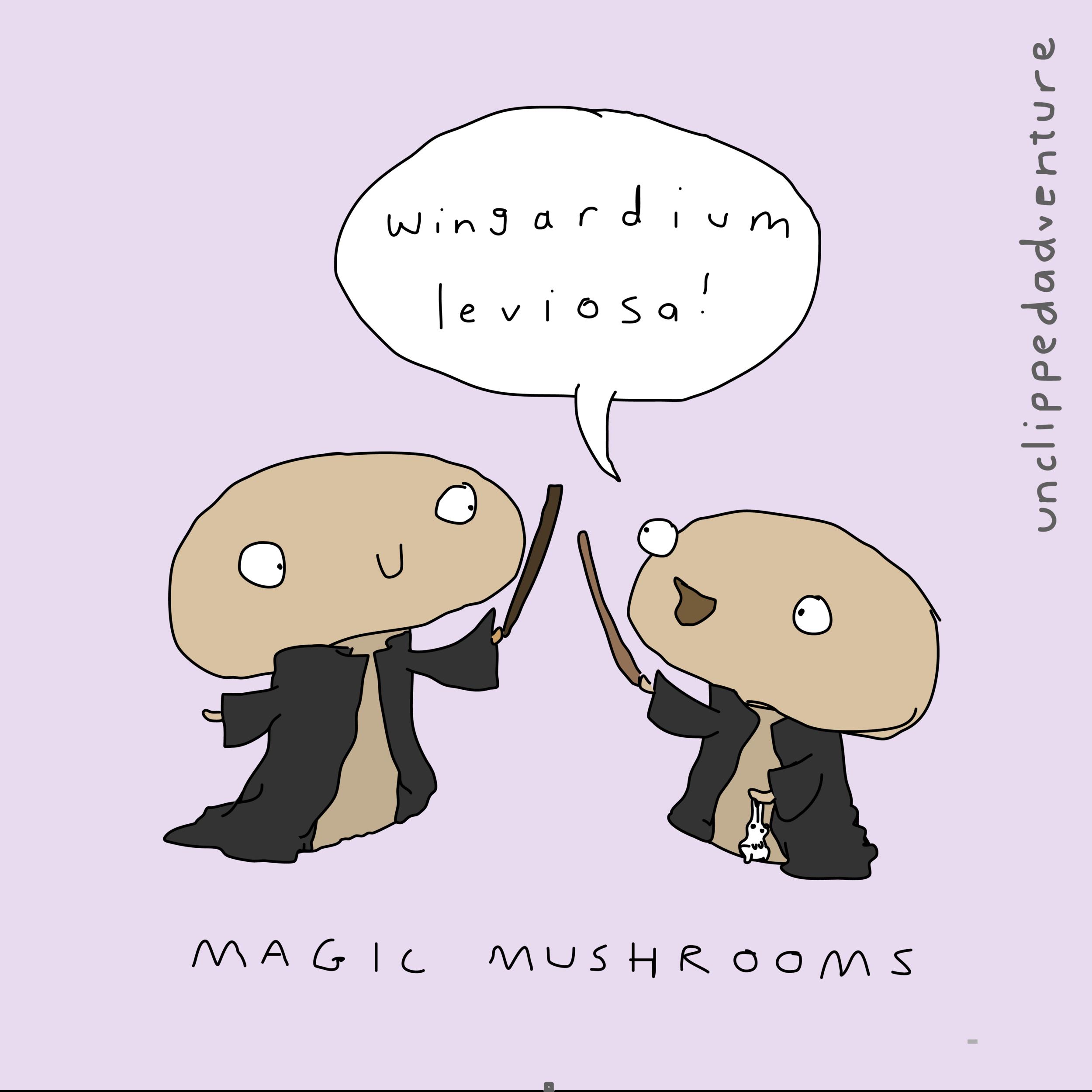 magic mushrooms-09.png
