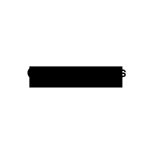 AlzheimersLA-Logo copy.png