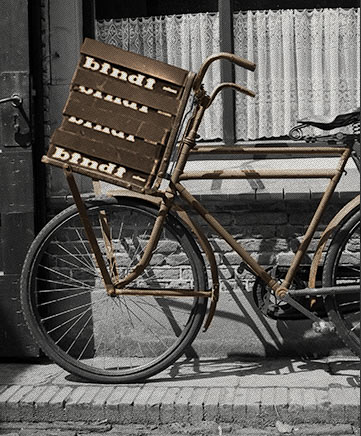 Familia Pro Bindi polkupyörä.jpg
