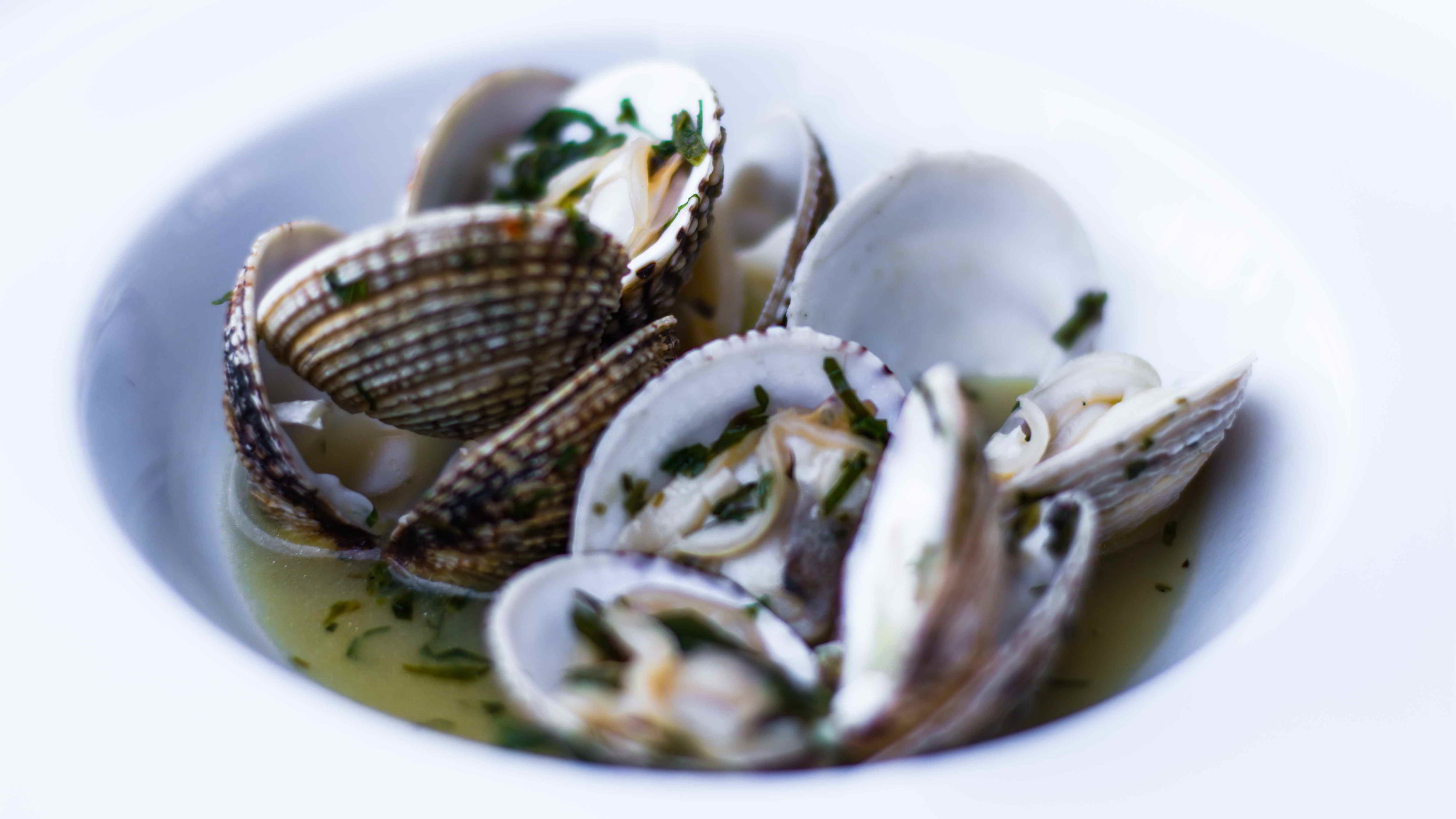 Varoulko_Seaside_Pireas_Greece_Clams.jpg
