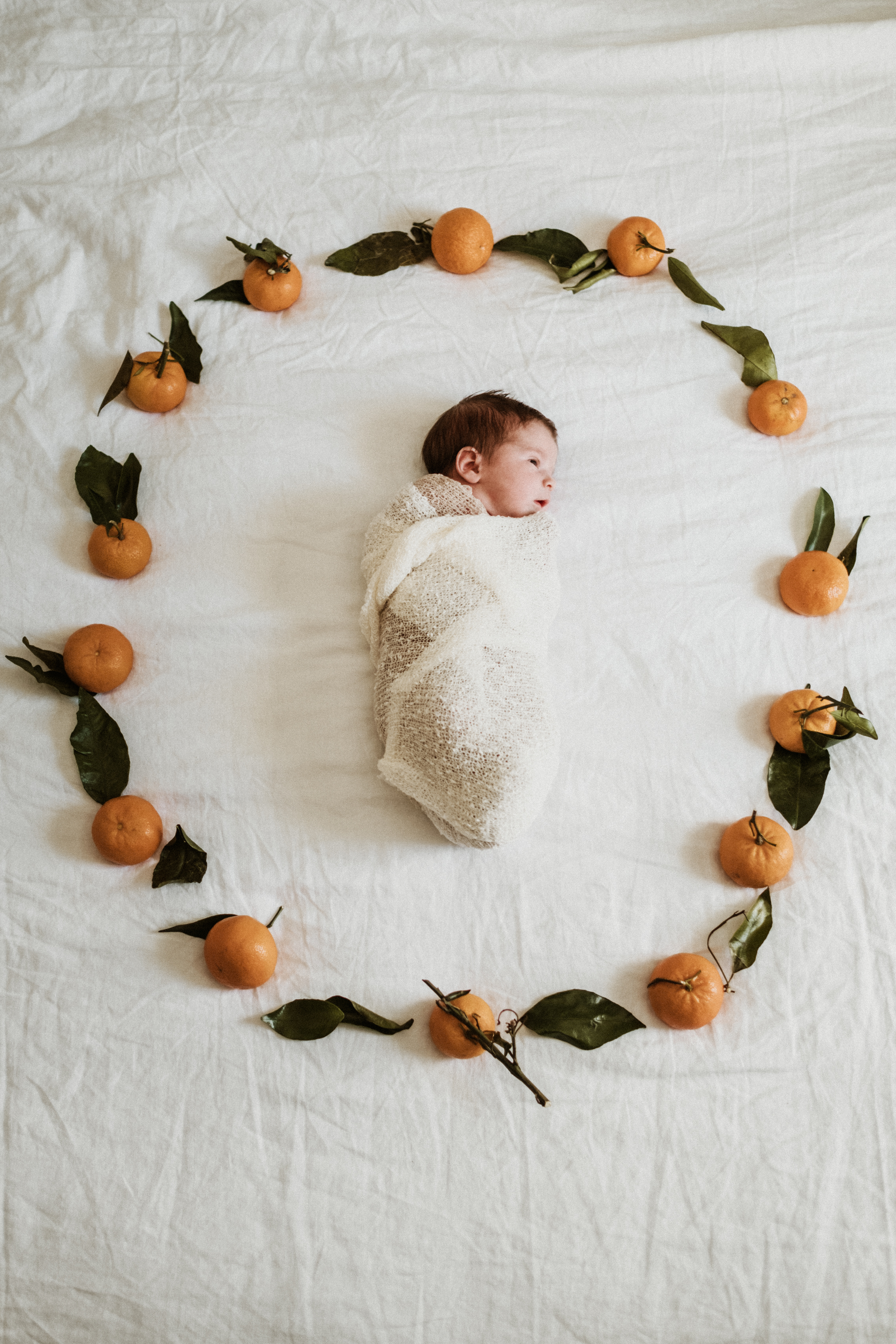 Barrie Newborn Photographer