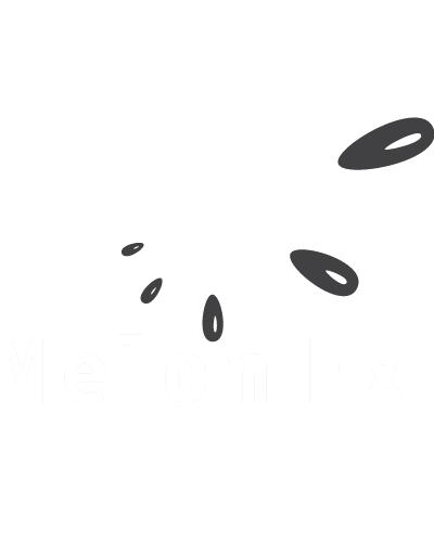 melonfx_logo.png