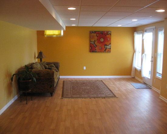 5711e90602df2c54_7593-w550-h440-b0-p0-q80--transitional-basement.jpg