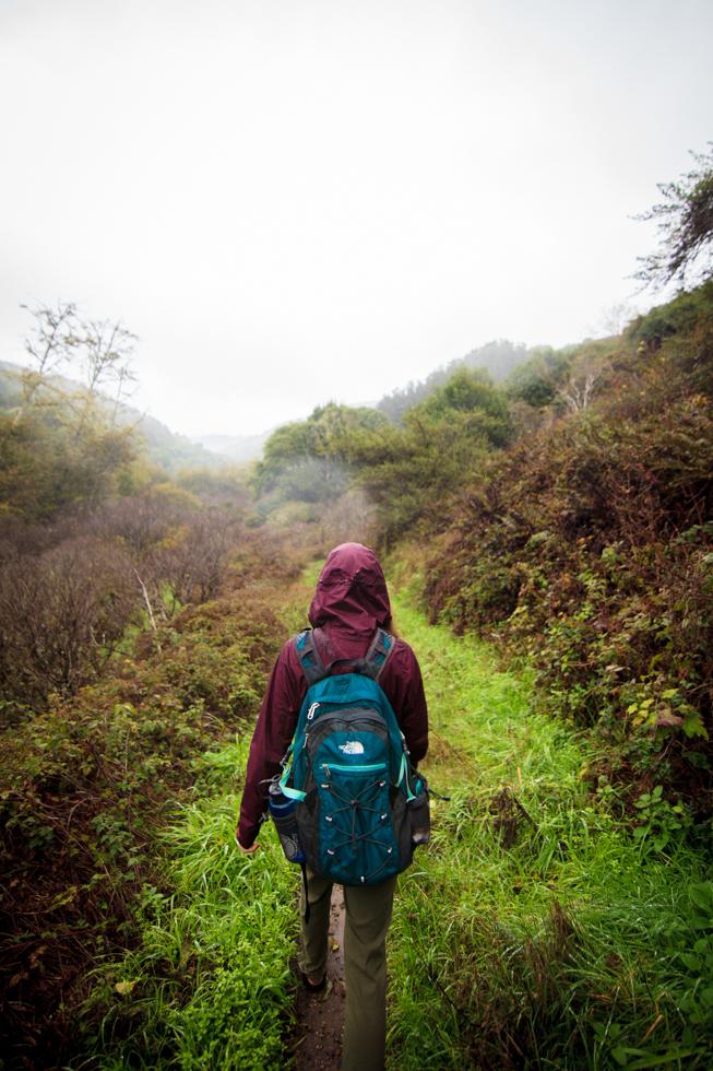 pt reyes california hiking