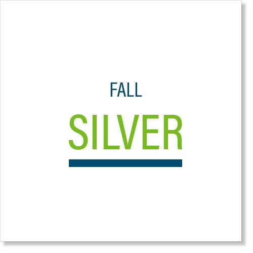 Fall_Silver.jpg