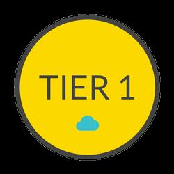 TIER 1 (3).png