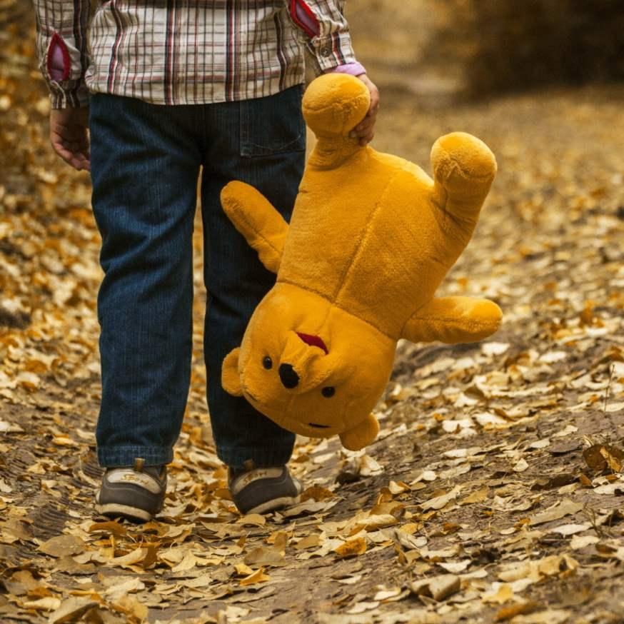 child-autumn-bear-leaves-2.jpg