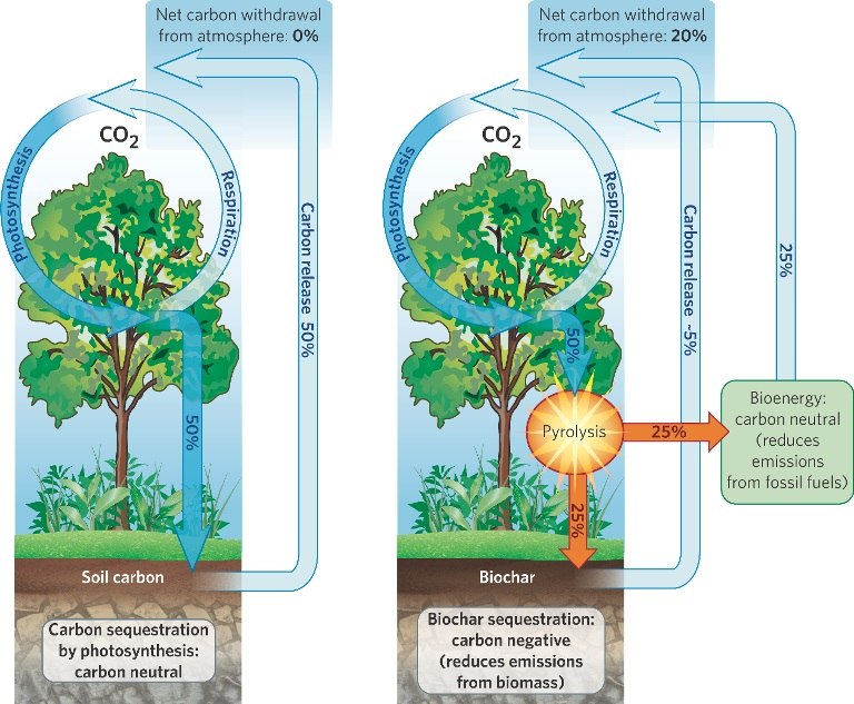 Carbon cycle improvements with biochar. Photo credit unknown.