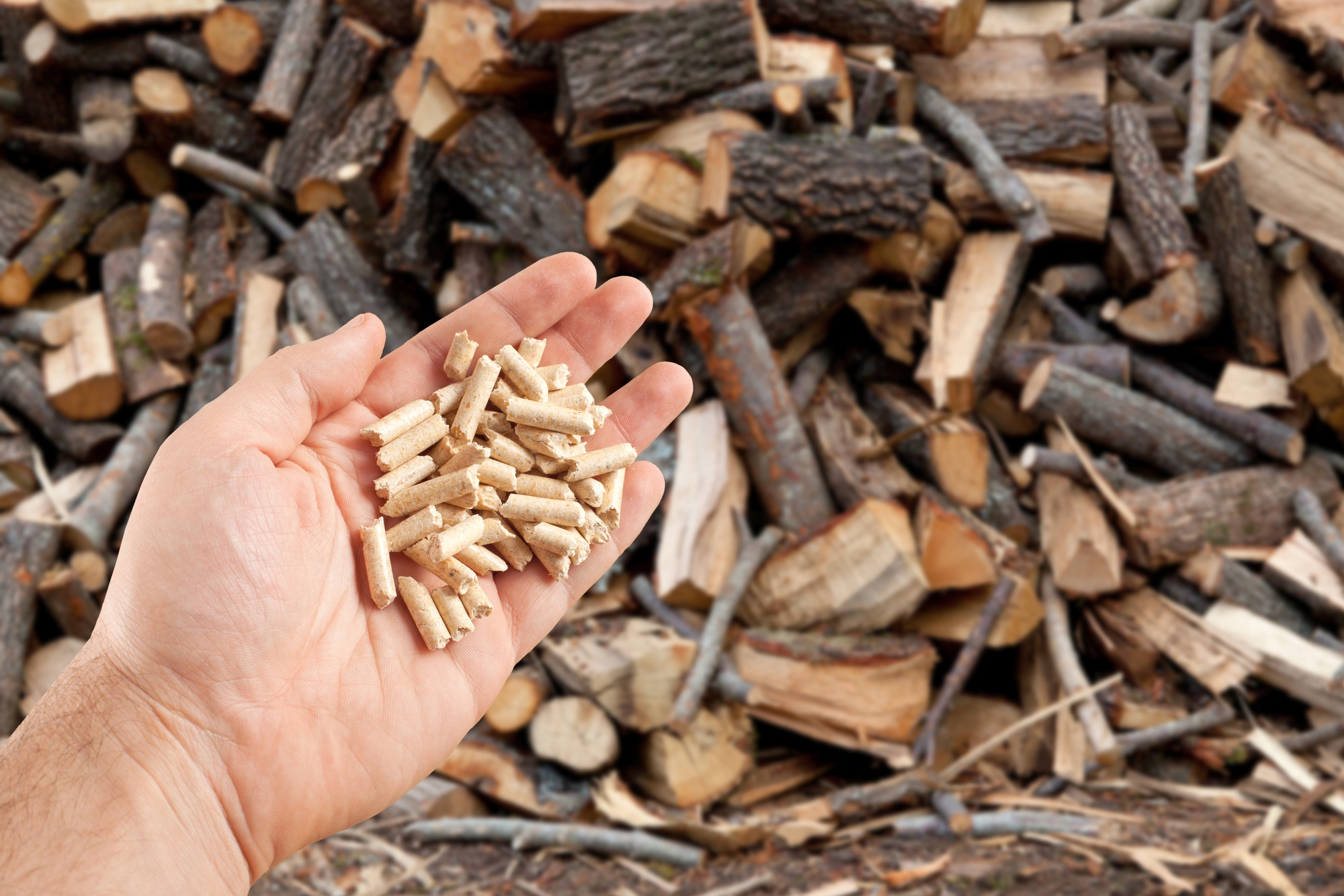 Wood waste to thermal fuel (pellets).