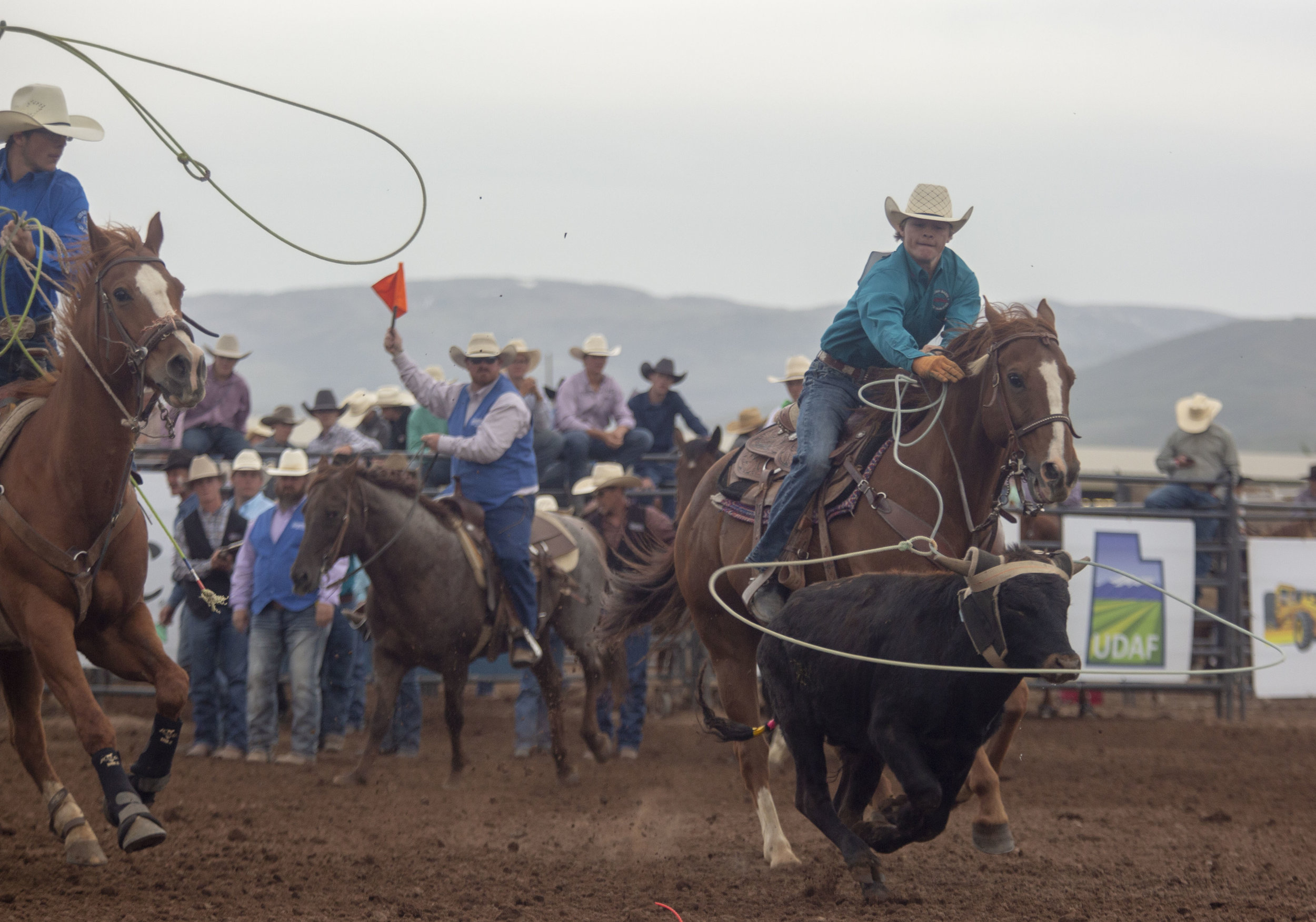 Students lasso a calf in the team roping event at the Utah High School Rodeo Association Finals.