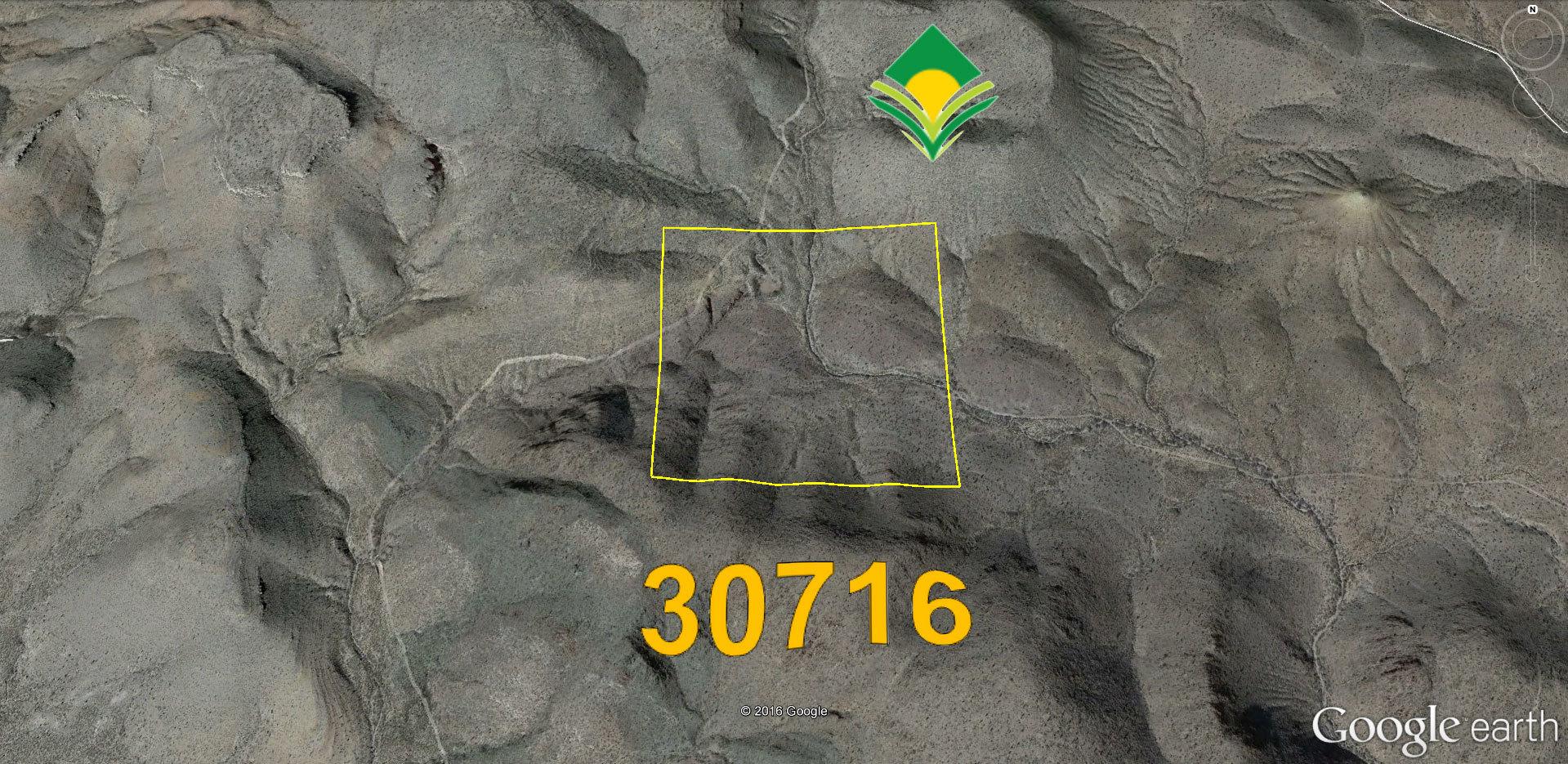 426405707.jpg