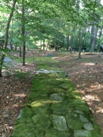 LES Center Path.JPG