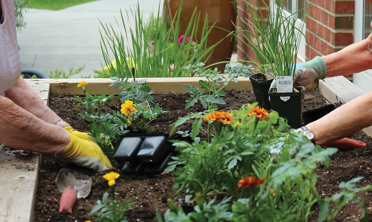 Art classes, pleasant outdoor spaces and gardening activities are some of the dementia-friendly initiatives on offer at United Active Living's Fish Creek North Assisted & Memory Care residence. Photos courtesy United Active Living