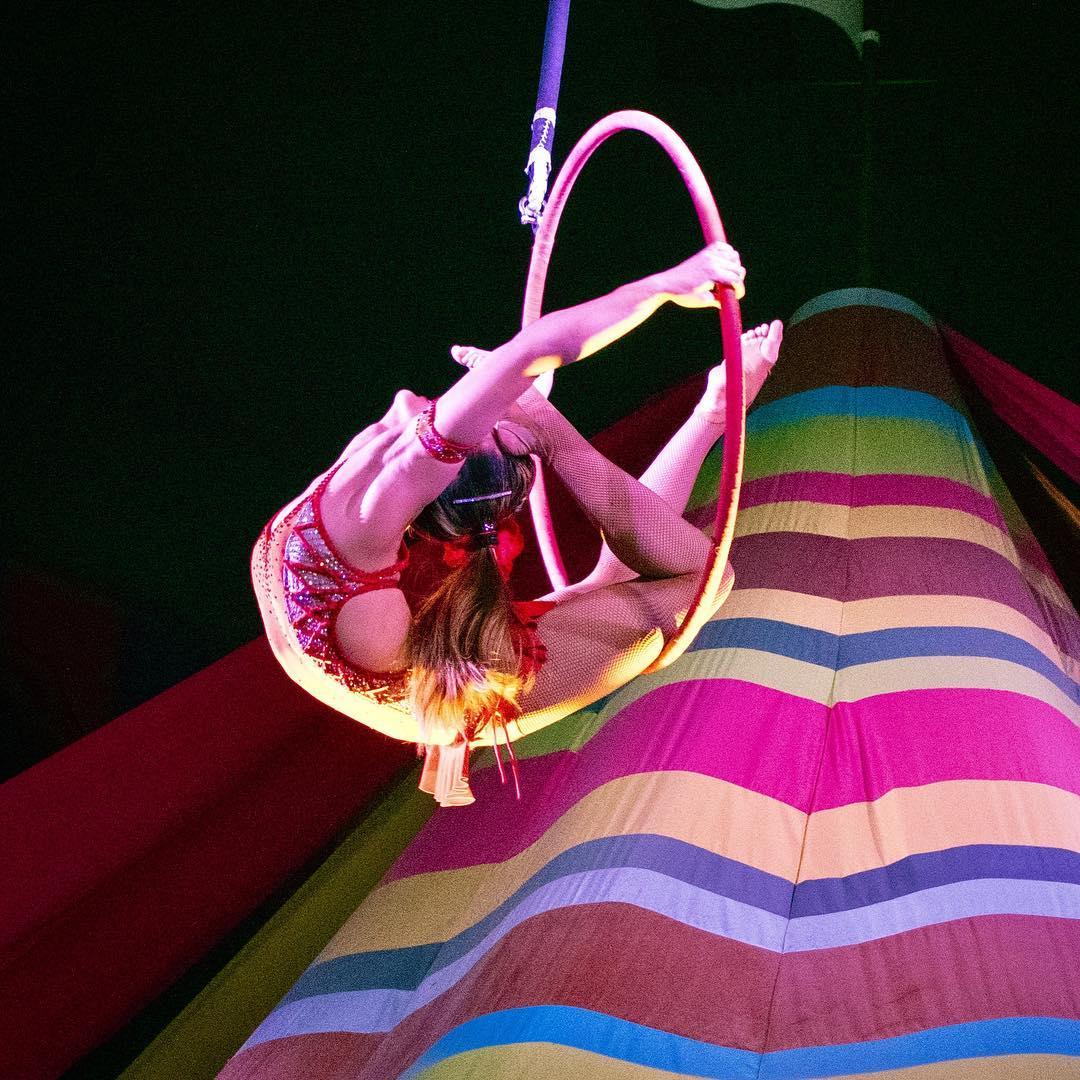 Aerial Lyra Circus Circus