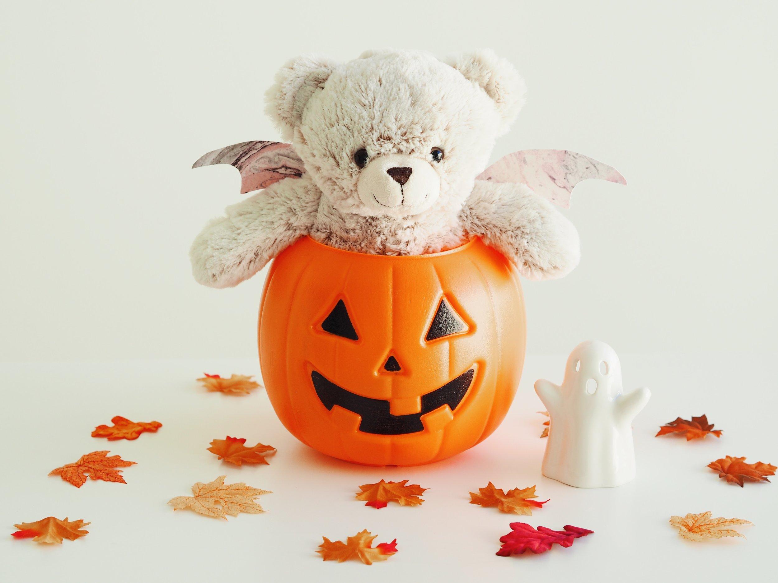Dreamline Alliance Halloween Bear