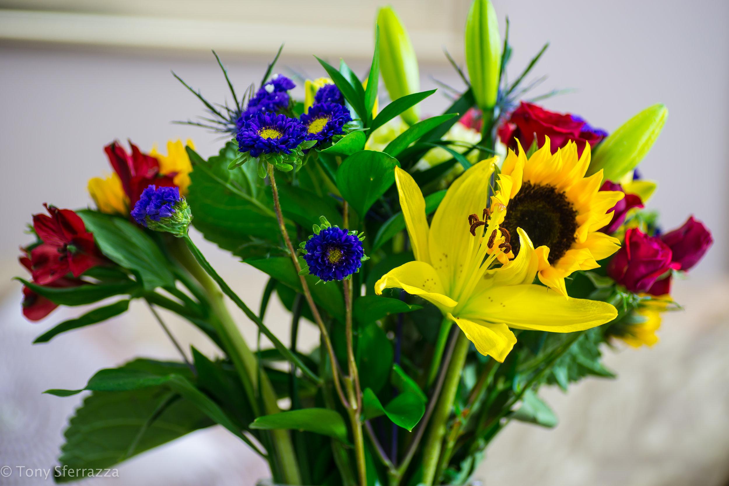 Bouquet (Macro)