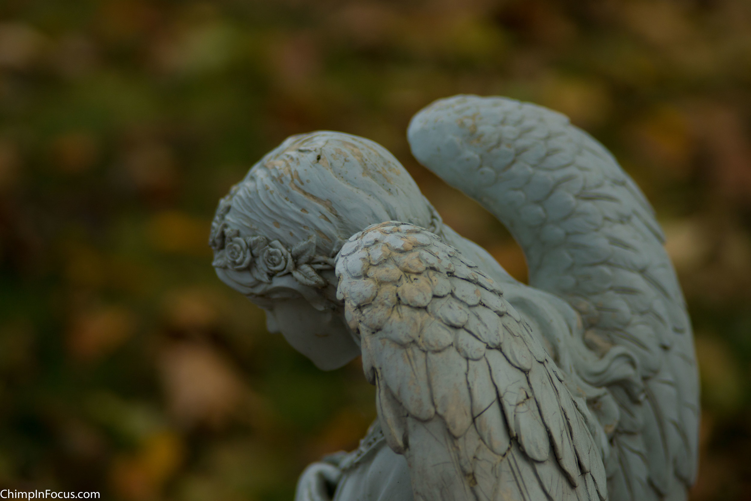 Angelic Autumn