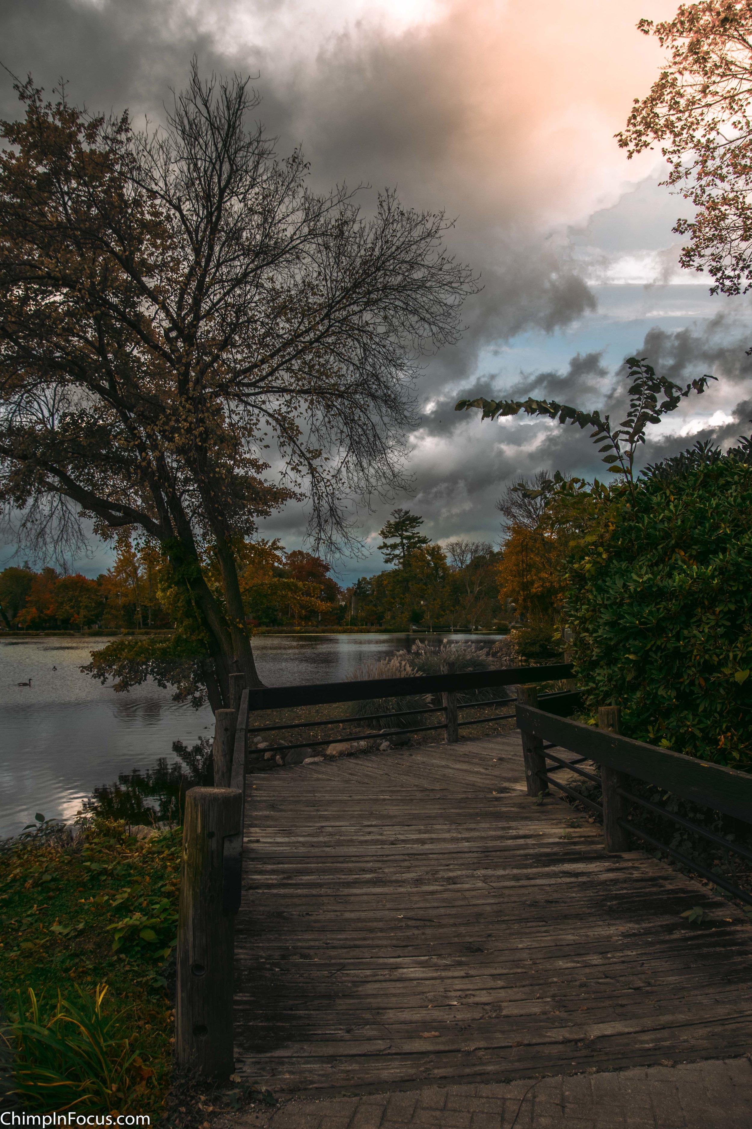 Autumn Walk throuh the Park