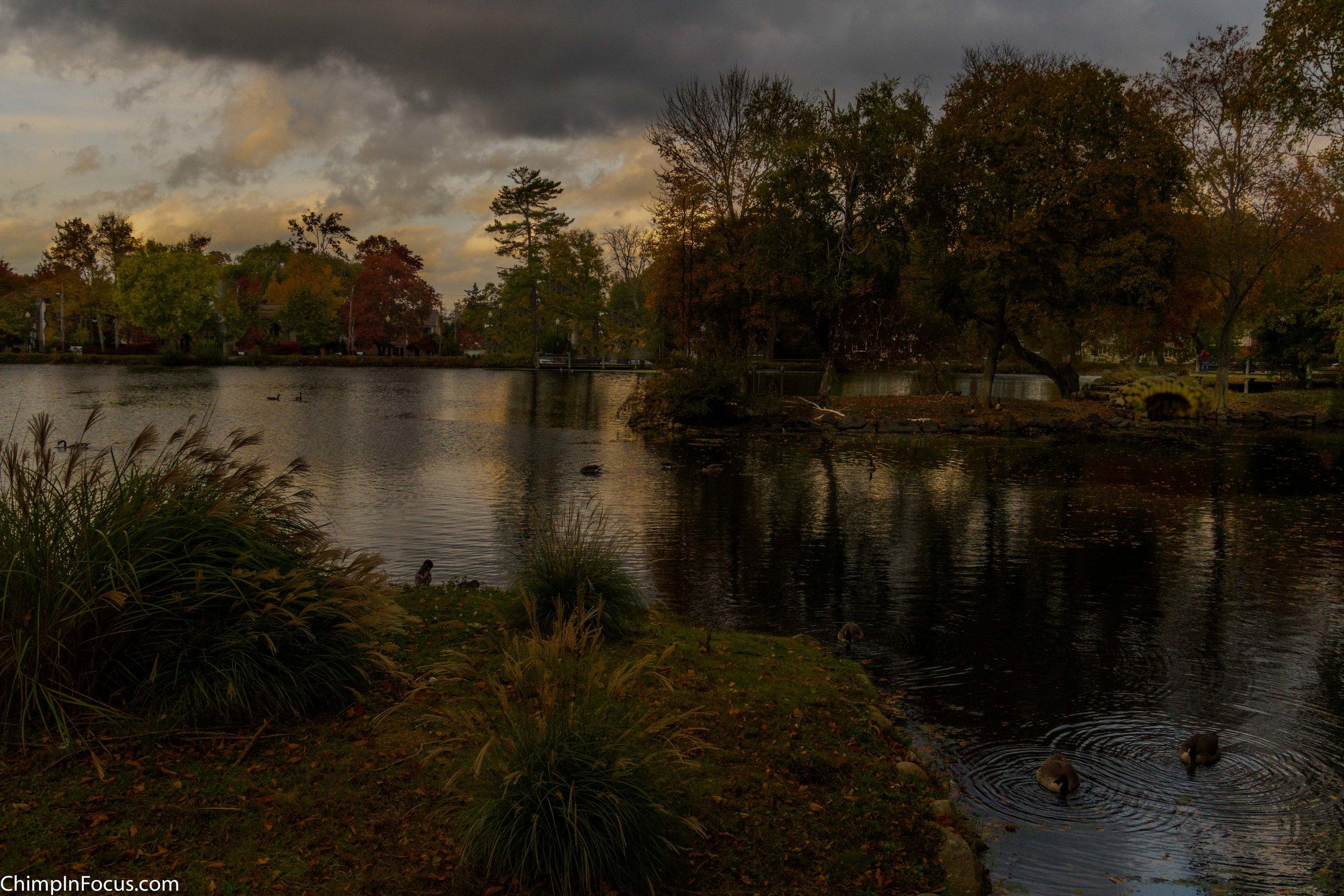 Dark Skies over Park