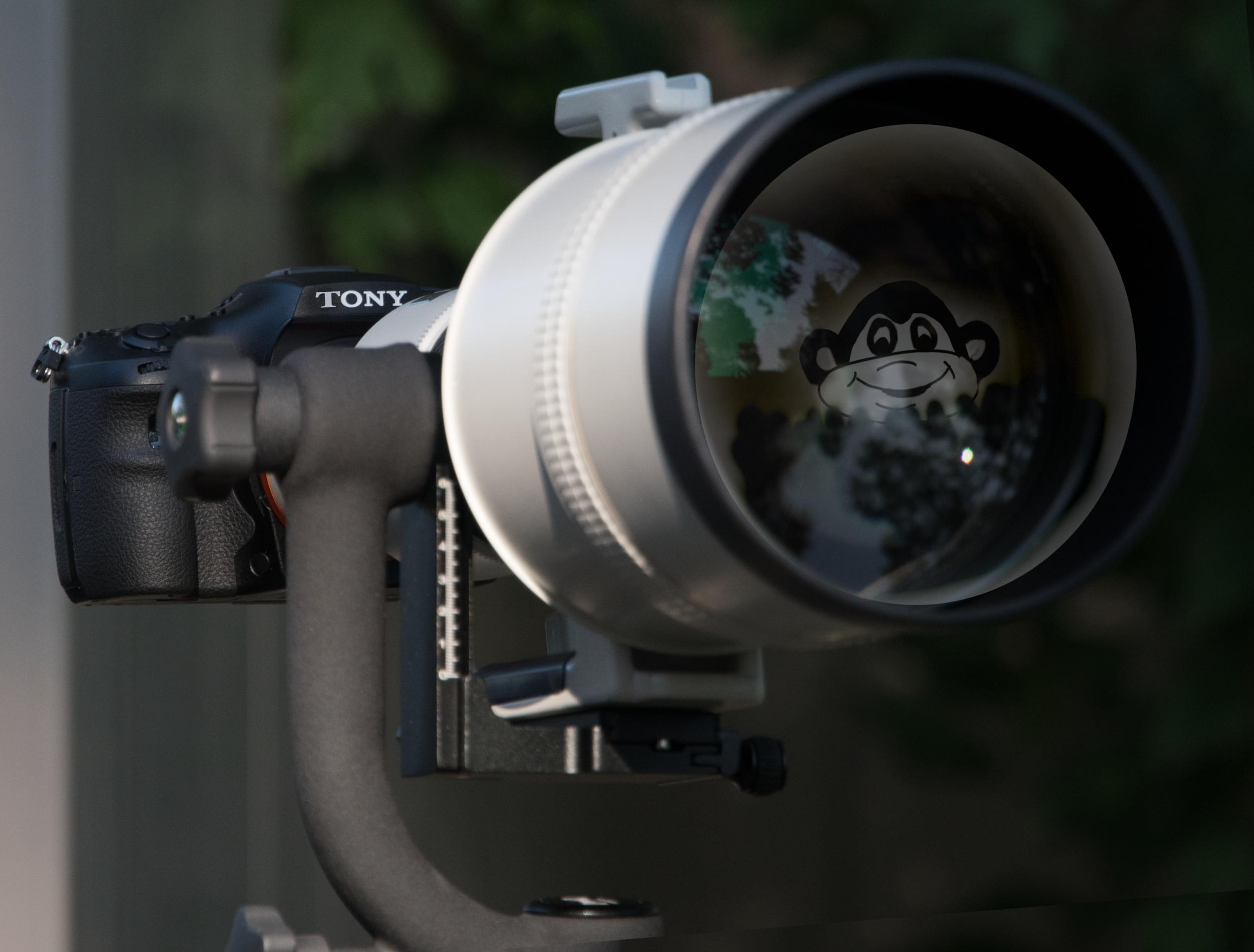 Tony Camera.jpg