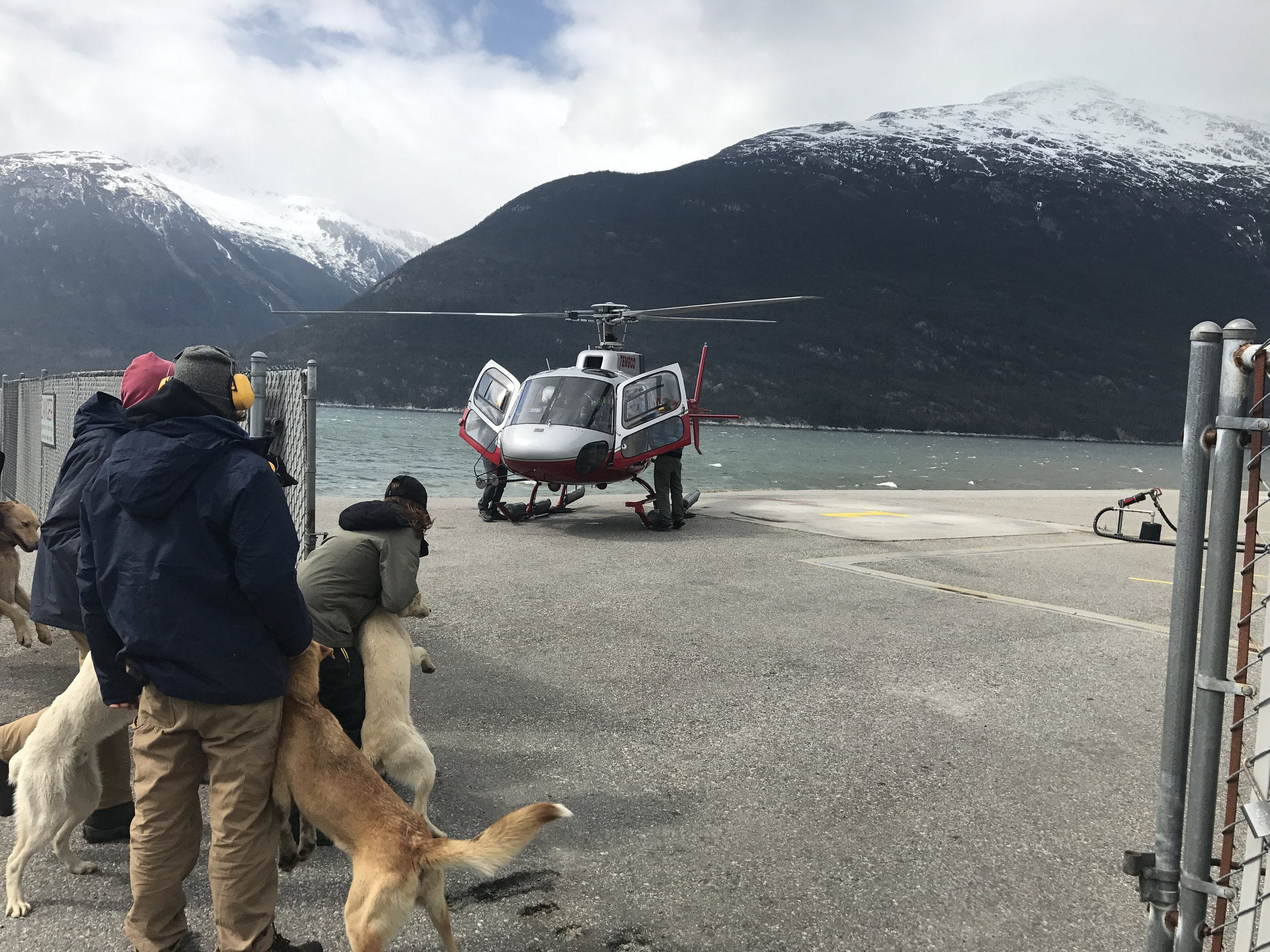Everybody is awaiting their helicopter ride up to the Denver Glacier