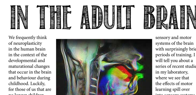 adult-brain-poster.png