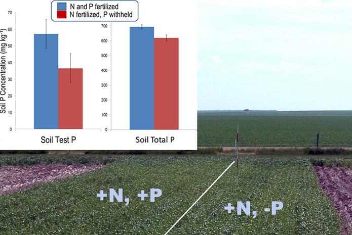 understanding-legacy-phosphorus.jpg