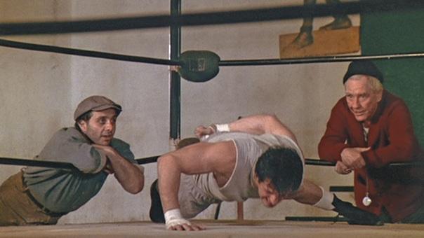 Rocky-OAPU.jpg