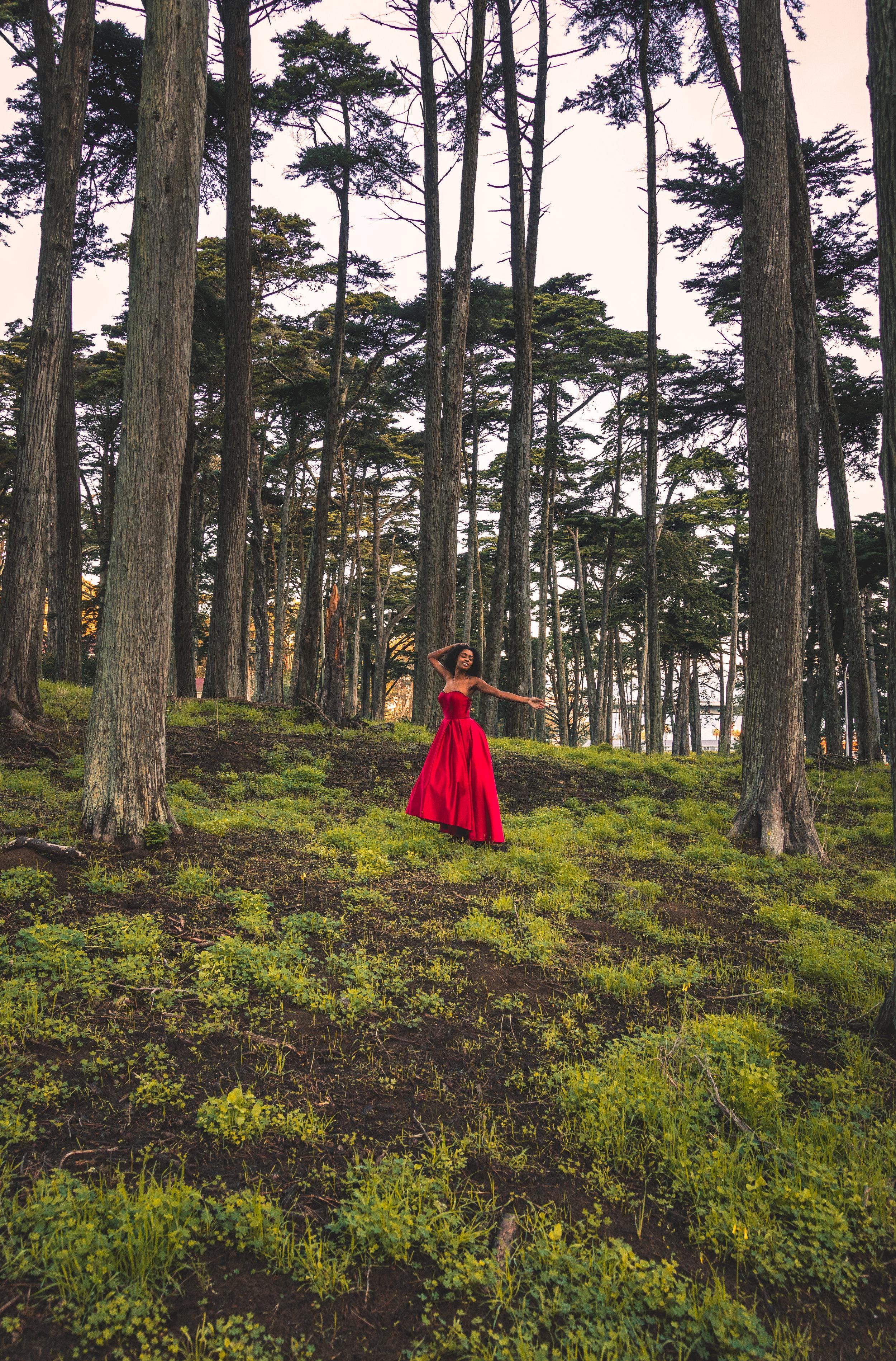 Brandon red dress series 20.jpg