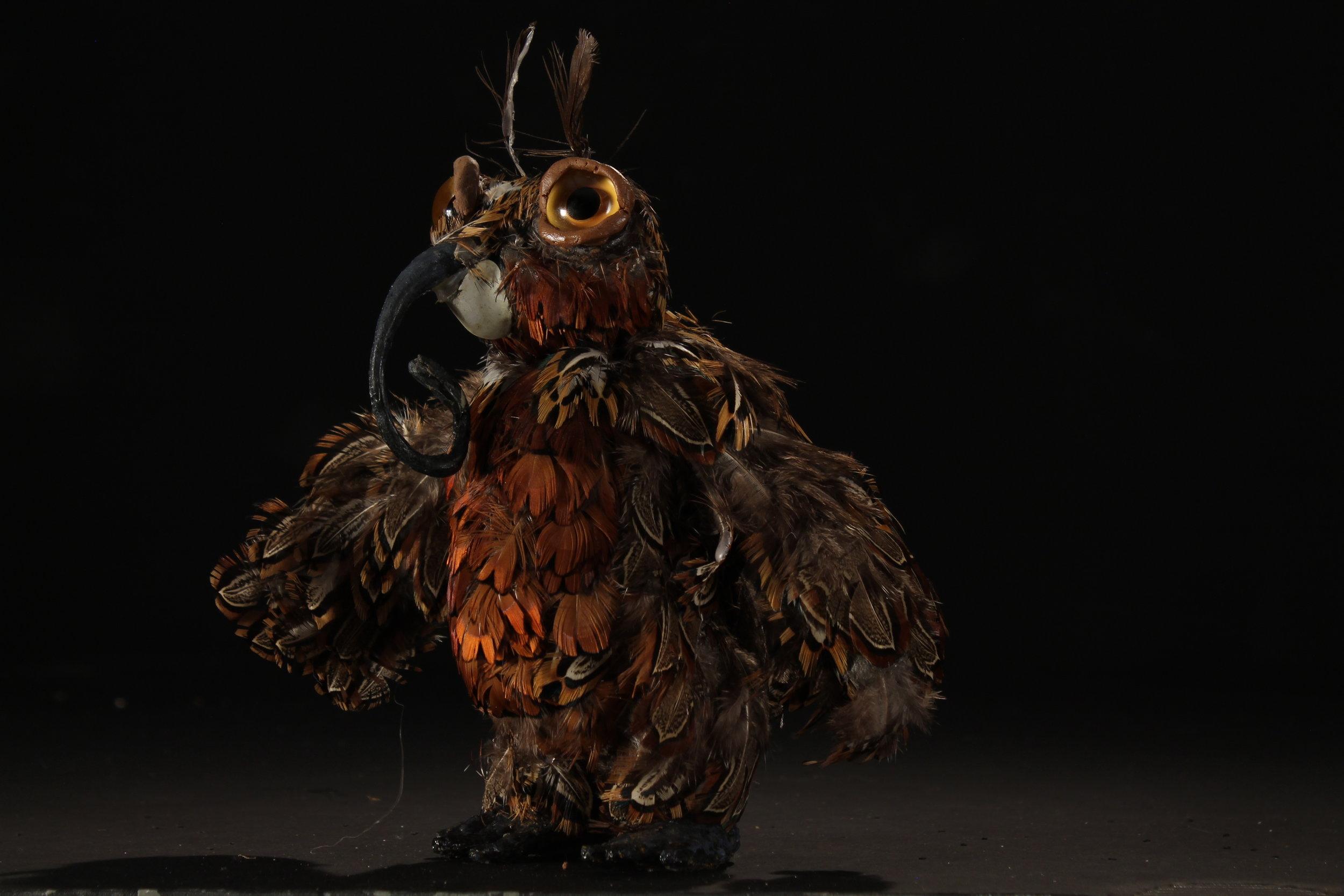 Moth Owl - Side