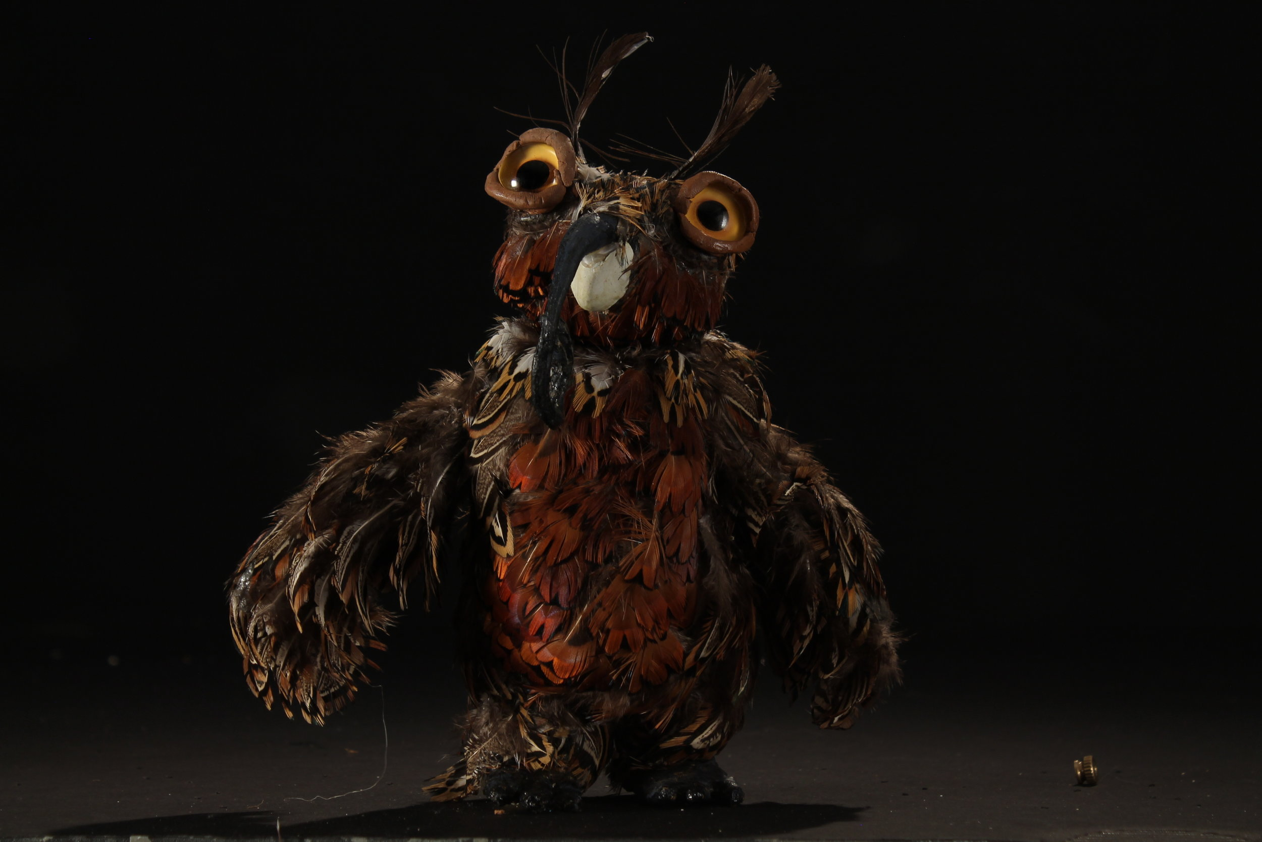 Moth Owl - Front