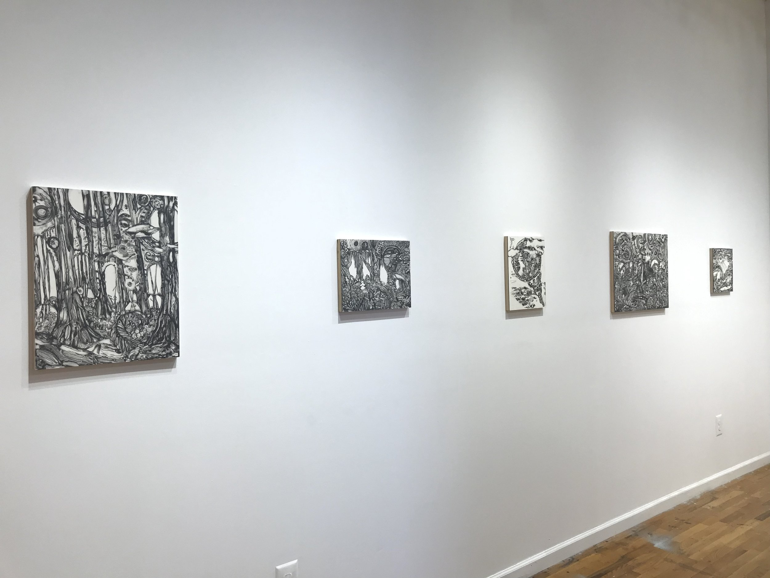 installation view of graphite works by Maria Calandra