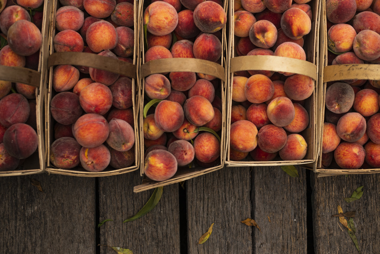 peaches0145_1.jpg