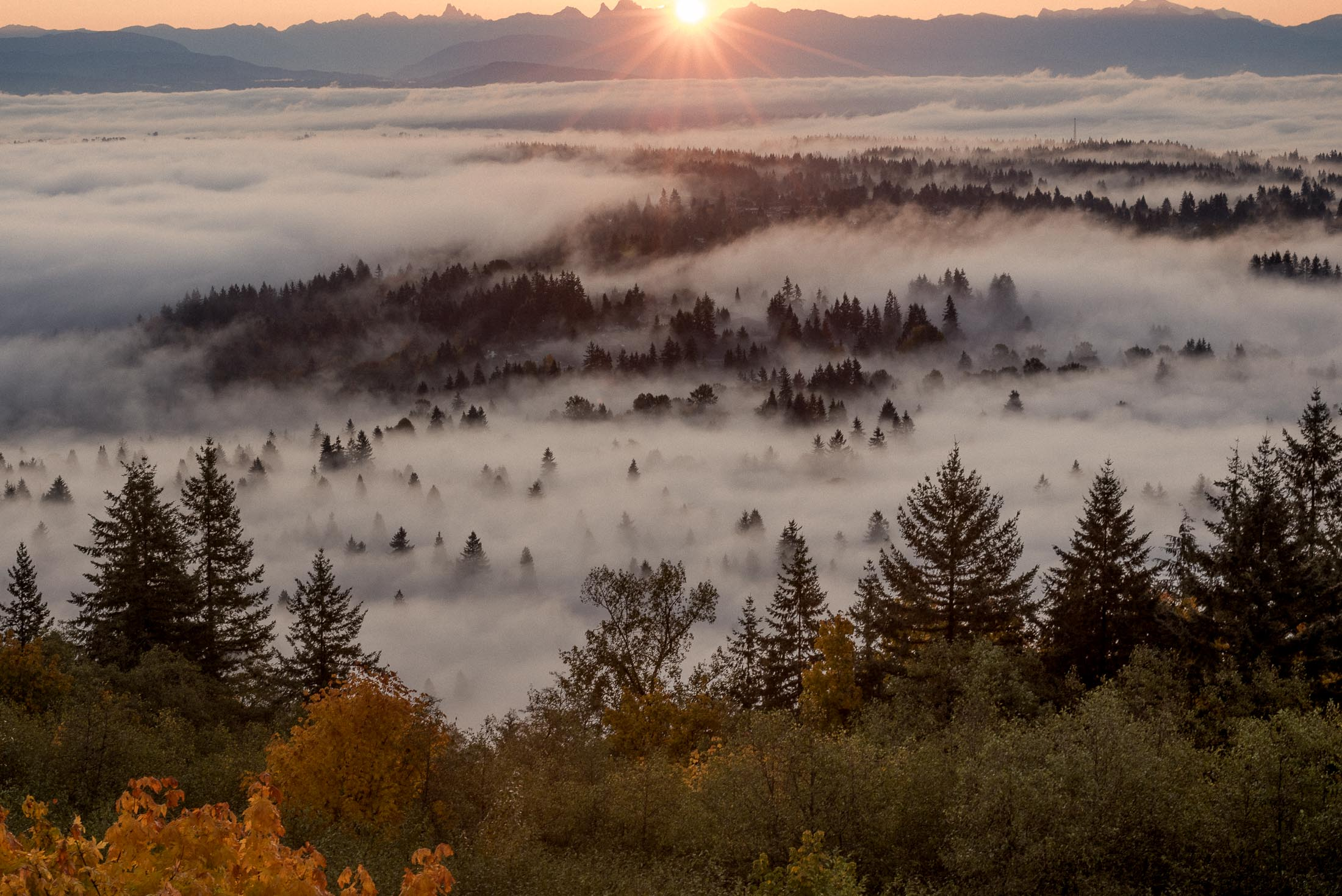 The view of Port Moody and Coquitlam from Burnaby Mountain. The sun rises behind Mount Baker.