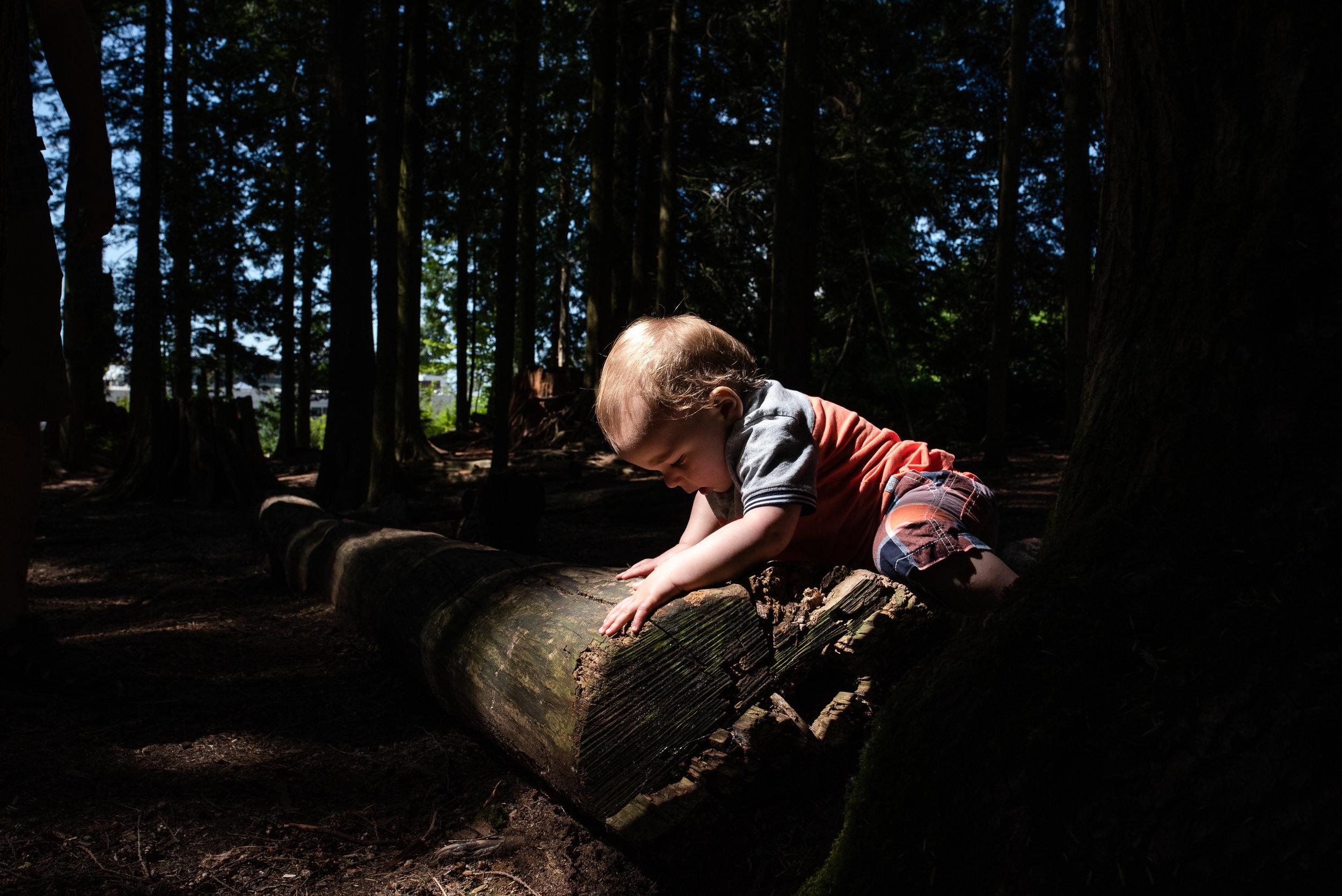 Kid climbing a log