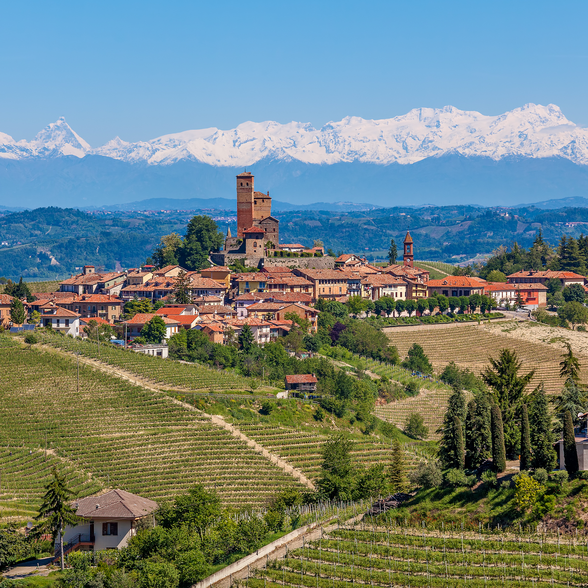 wine & food tour - italy + france
