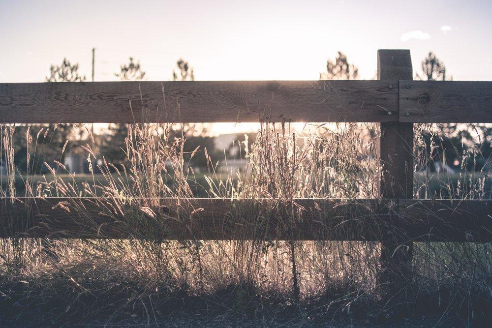 759e3-fence.jpg