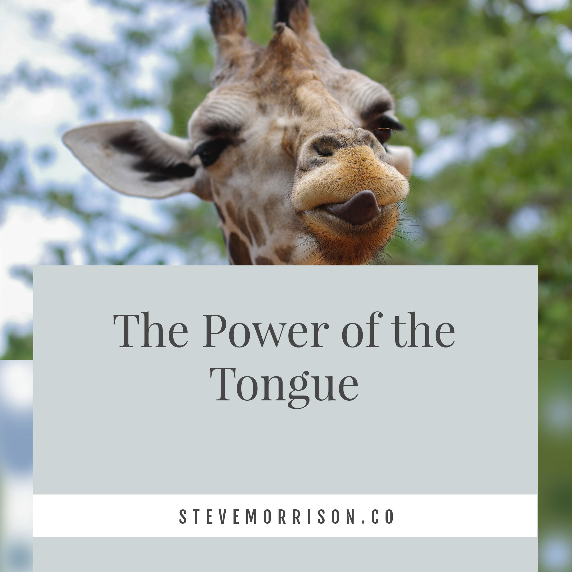 The Power of the tongue.jpg