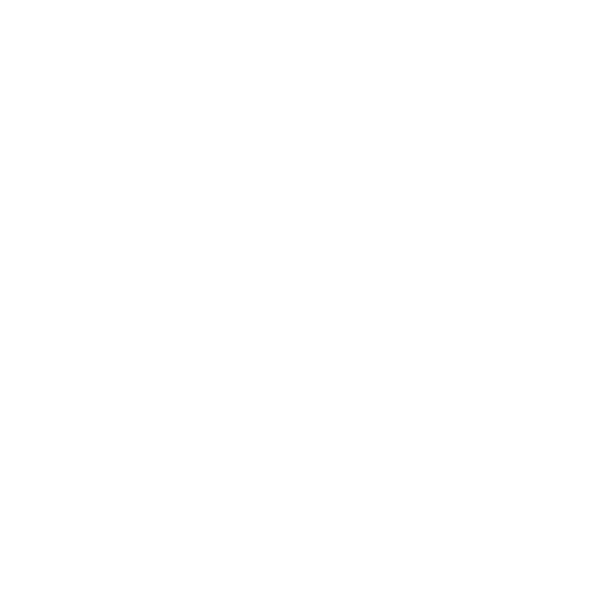 TDK.png