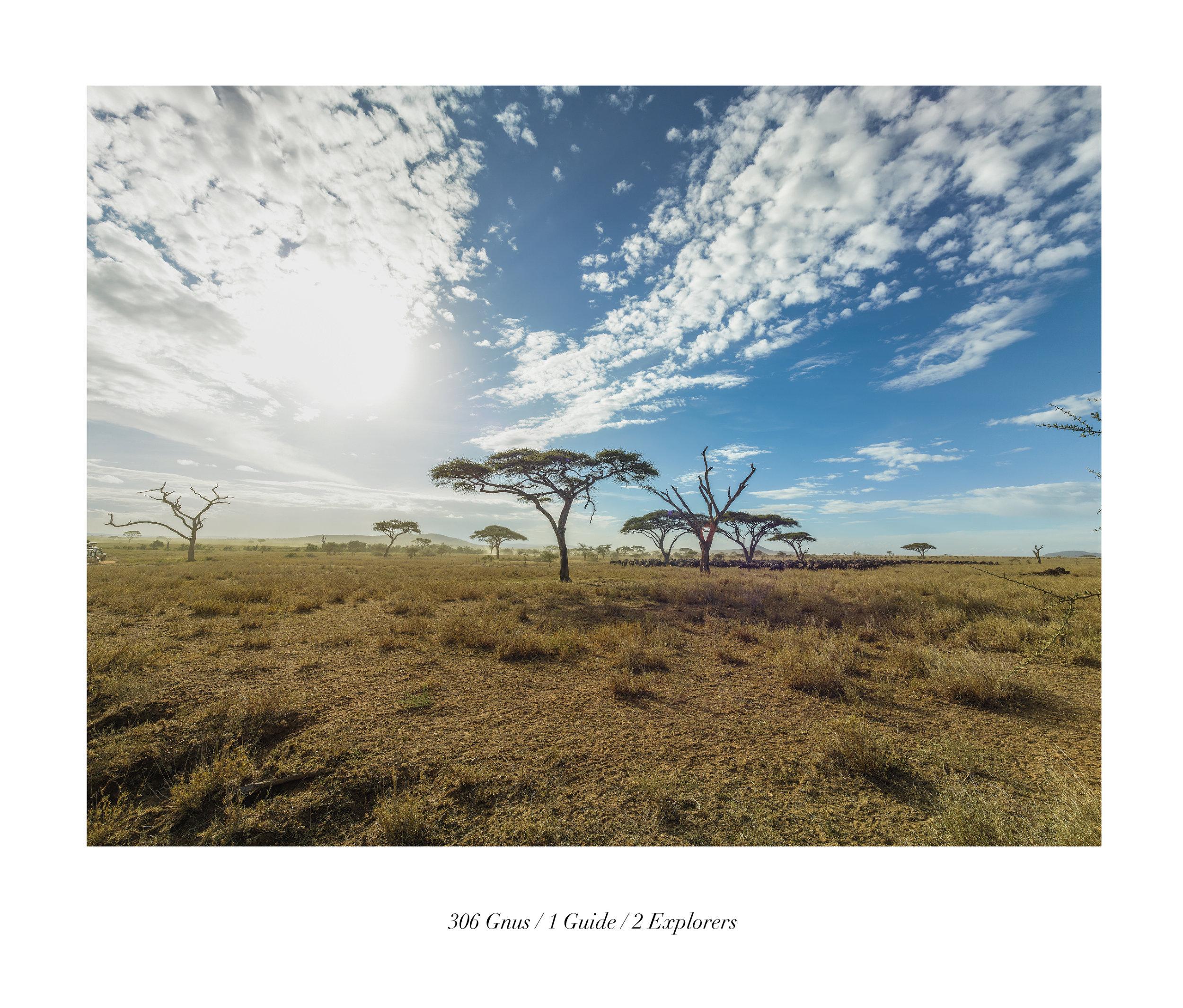 Serengueti (TAN 1.4)t