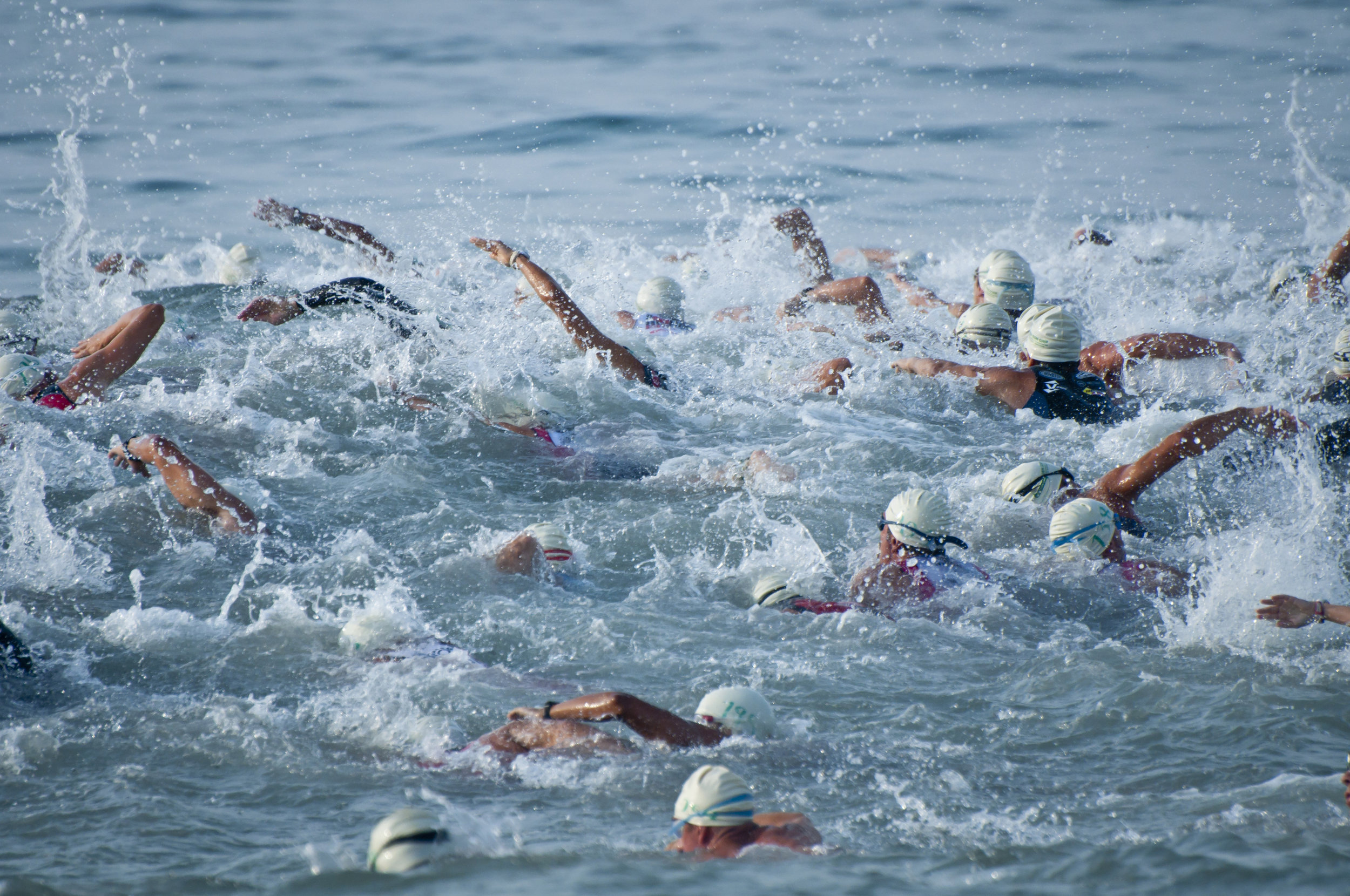 Triathlon Swimmers Blue.jpg