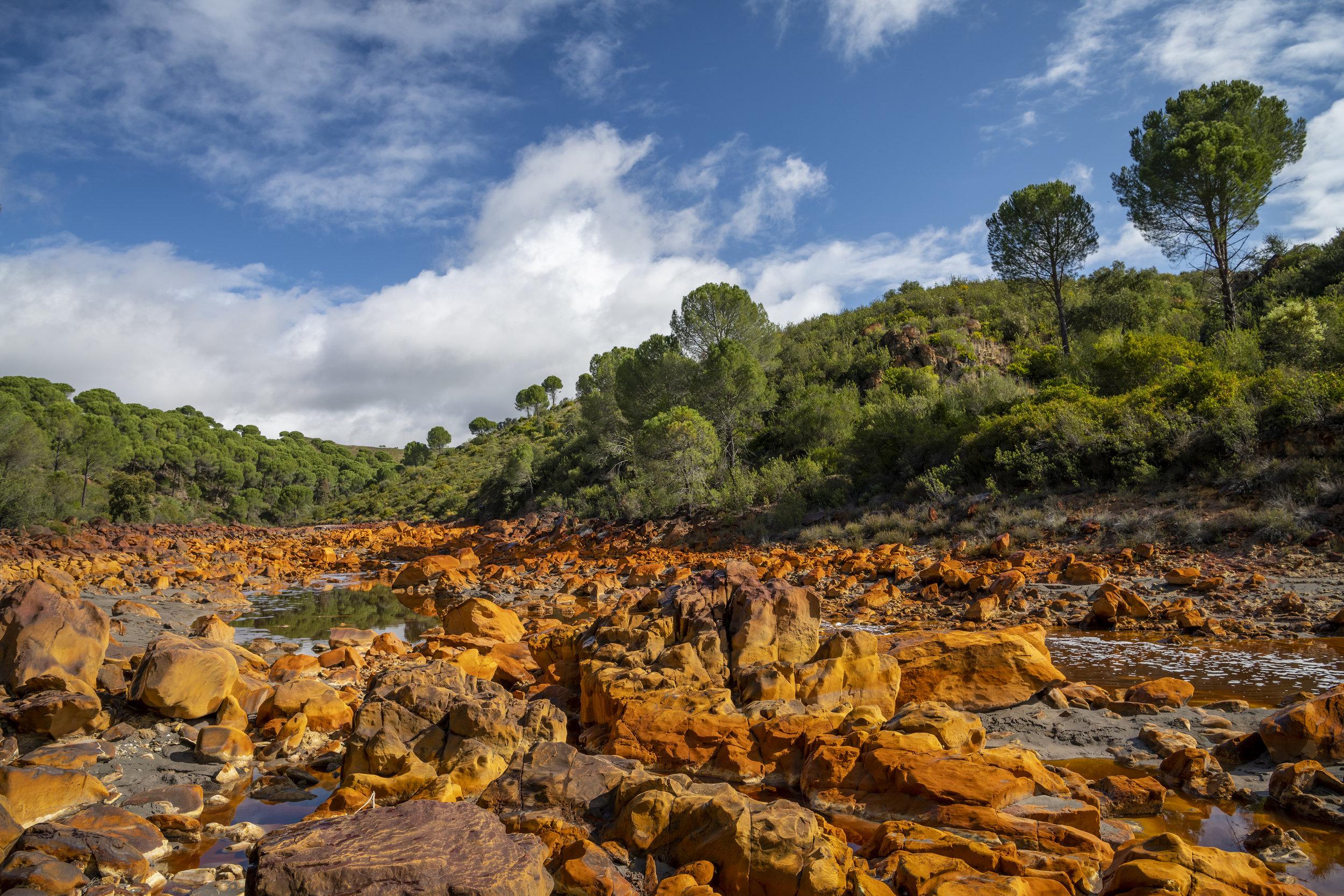 Rio Tinto Landscape SML.jpg