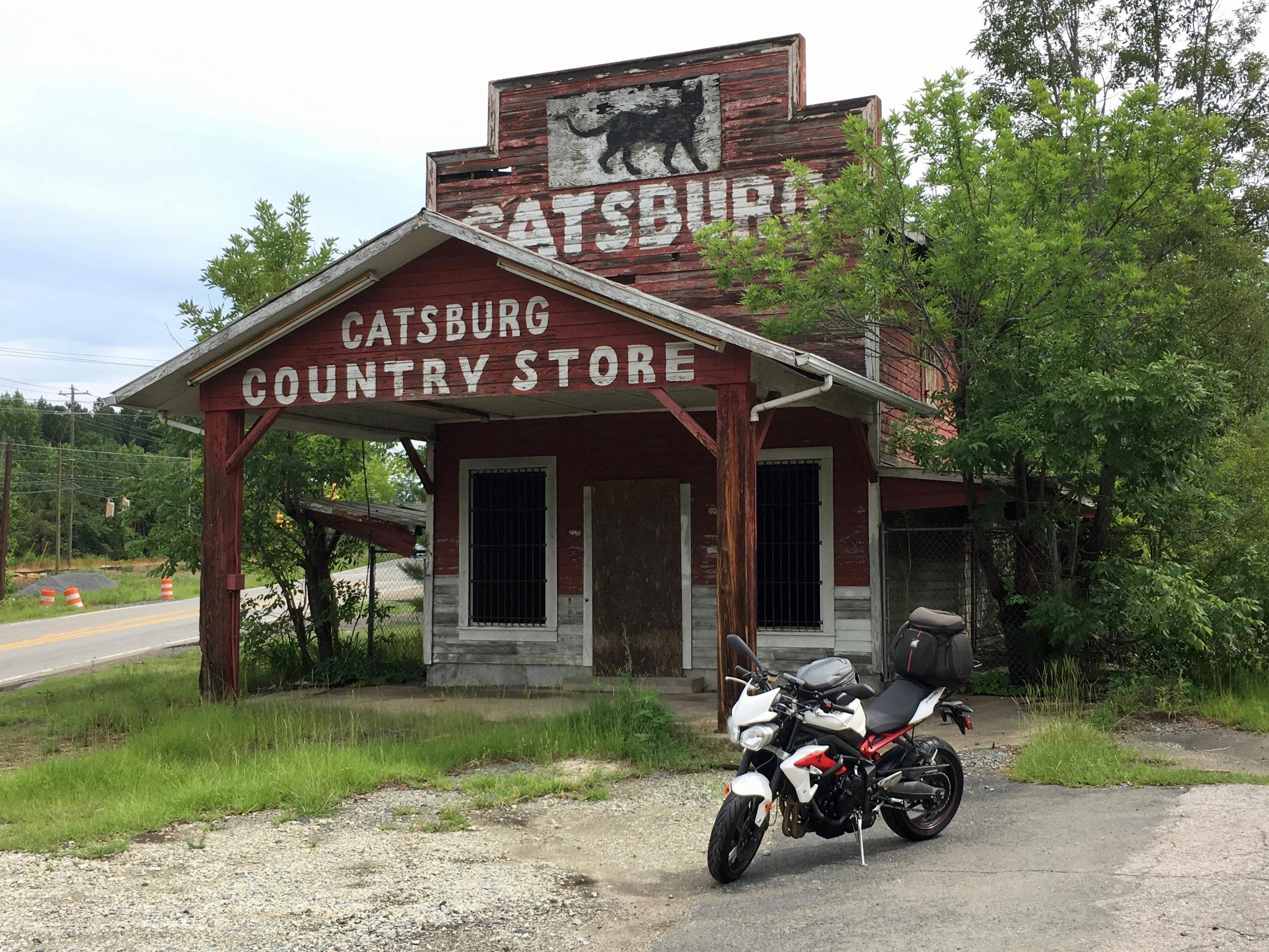 Catsburg - 1.jpg