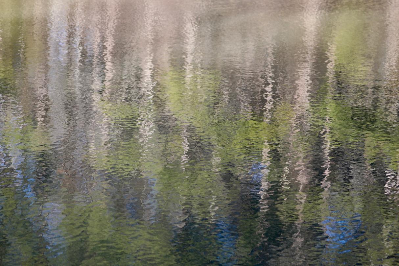Camden Reflections