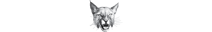 bobcat-design-wide.png